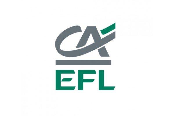 Grupa EFL (Europejski Fundusz Leasingowy)
