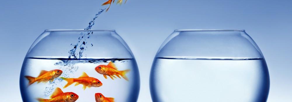 Rozmowa rekrutacyjna - musisz się wyróżnić