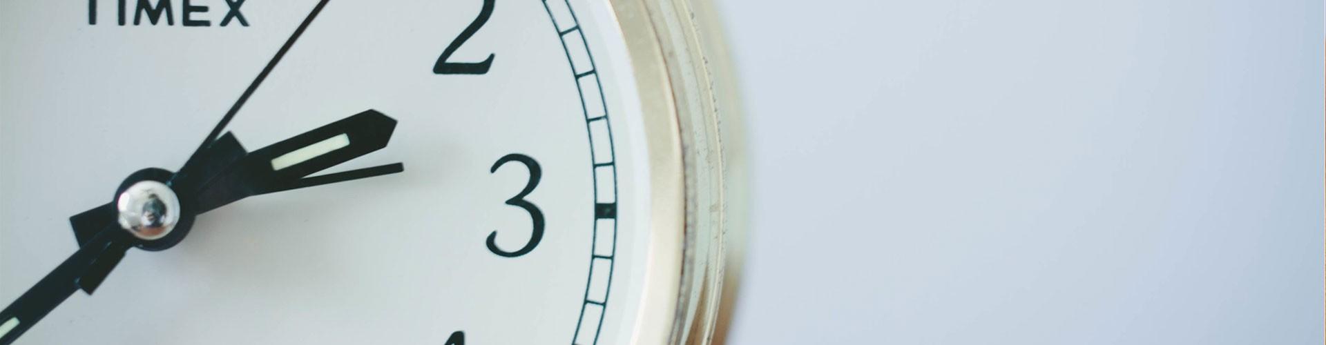 Szybkie CV: Napisz i pobierz CV online w 5 minut! (+20 szablonów)