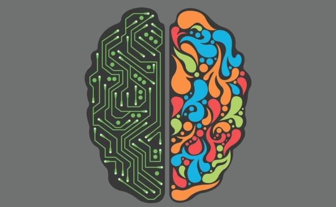 Za co odpowiadają półkule mózgu? Która dominuje u Ciebie? (Wideo)
