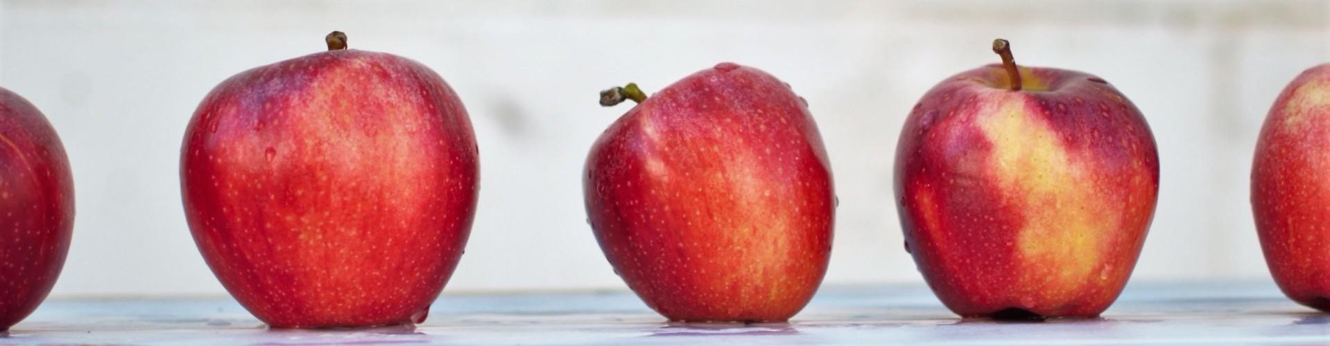 CV dietetyka + list motywacyjny — Wzór i przykłady [7 ważnych rad]