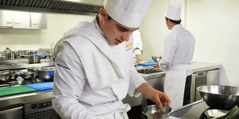cv i list motywacyjny kucharz