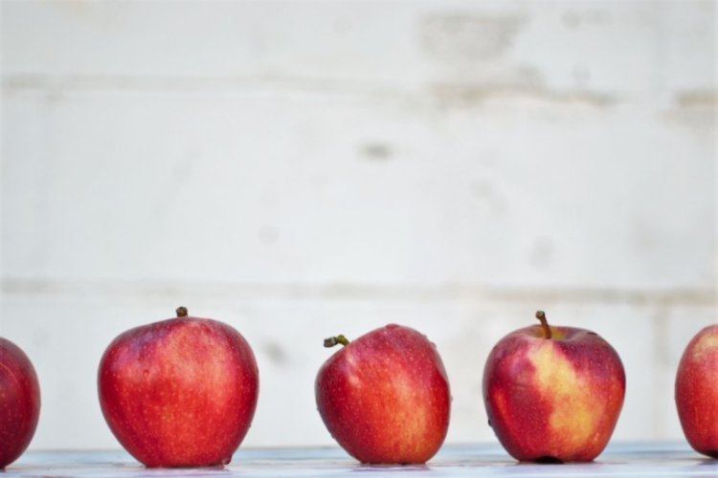 Dietetyk - praca. Jak zostać dietetykiem? Ile zarabia dietetyk?