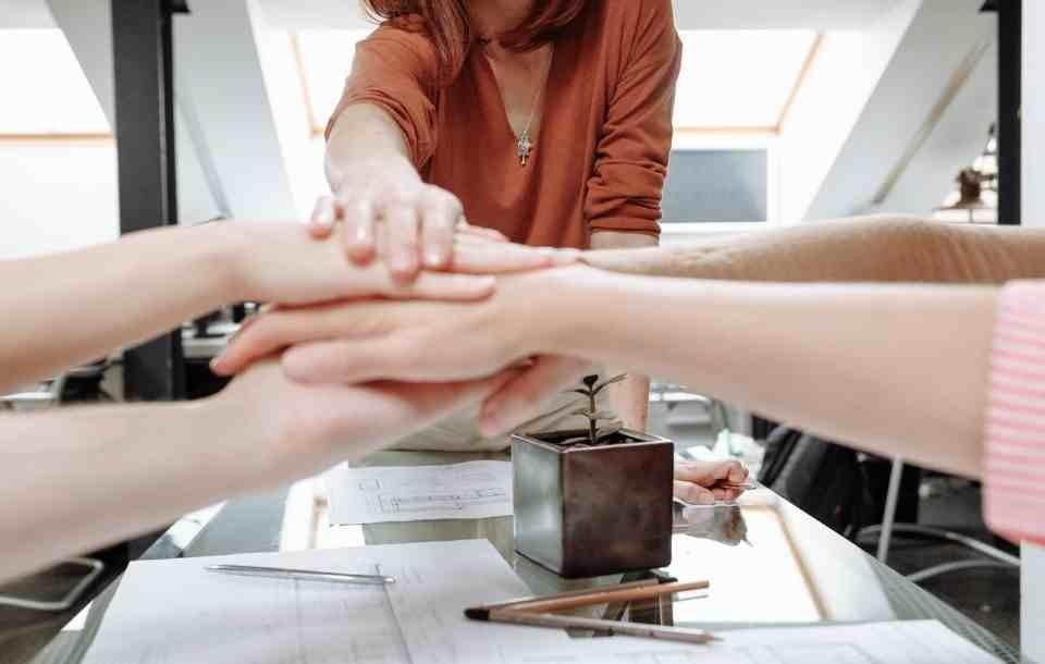 Team Leader - jaką ma funkcję w zespole? Ile zarabia?